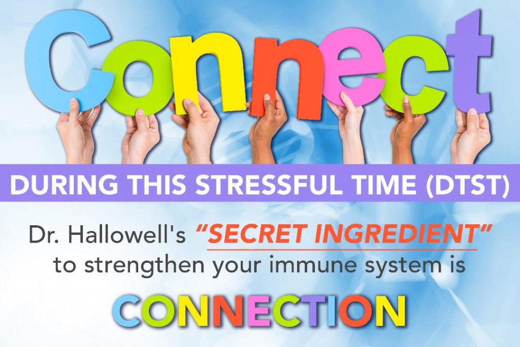Connection Immune System